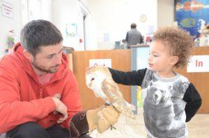 Owl - Open Farm School Tours